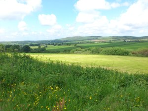 view over Pembrokeshire